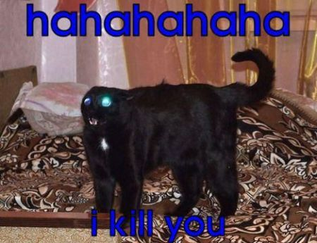The-Alien-Cat--What-Does-Mean-You-Dream-Cat-Attacking-You---Name-The-Cat-In-The-Film-Alien---