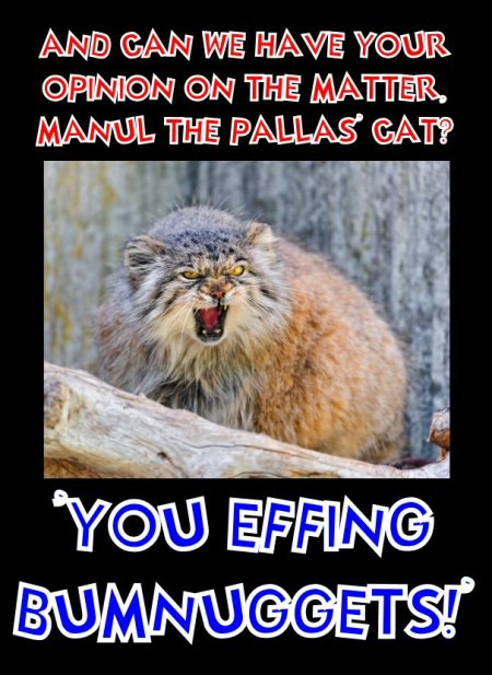 manul says you effing bumnuggets