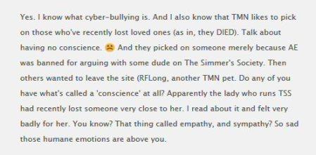 TtnFn04 exposed as homophobic bigot and rape porn author 10