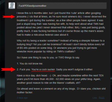 TtnFn04 exposed as homophobic bigot and rape porn author 14