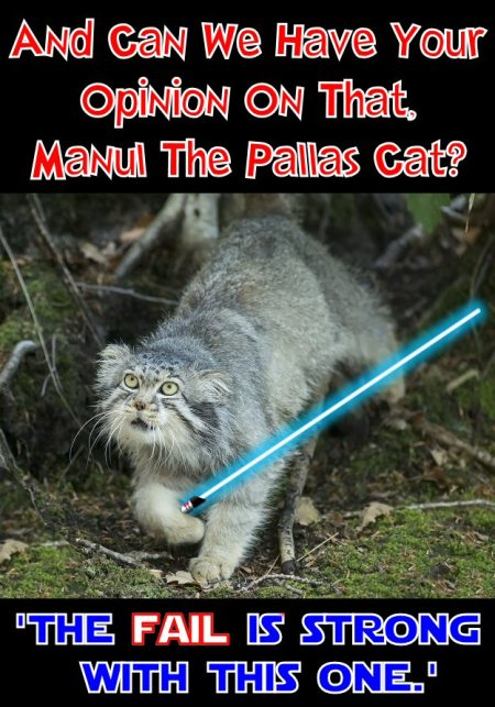 manul says the fail is strong with this one
