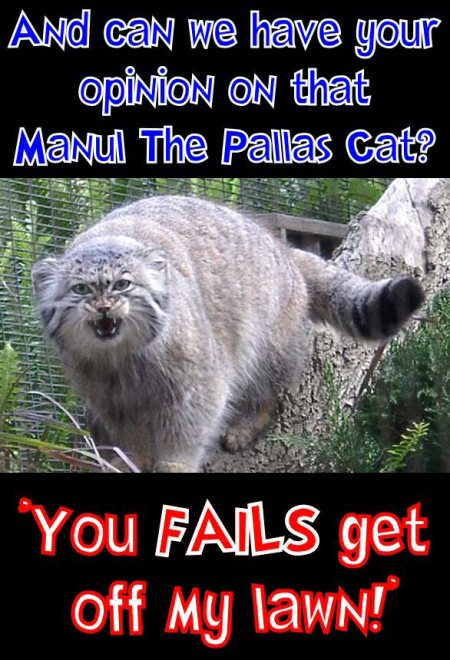 manul says you fails get off my lawn