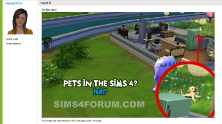 sims4forum posting lies about pets in sims 4 base game 1