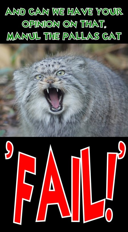 manul the pallas cat says FAIL