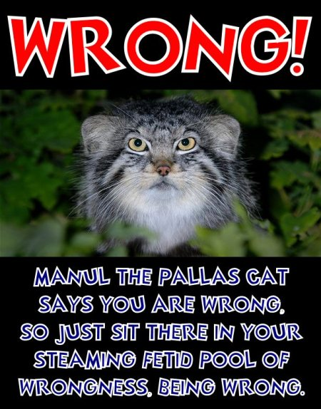 manul the pallas cat says you are wrong
