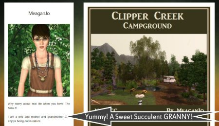 meaganjo's clipper creek campground