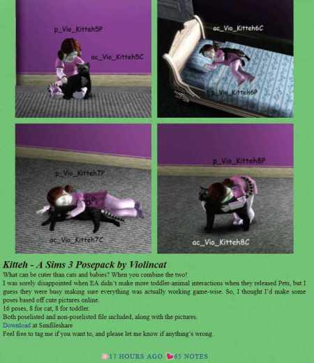 violincat-poses-a-problem-1